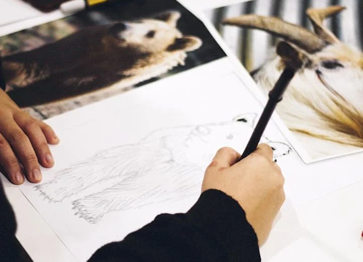Drawing Tips: How to get better at drawing