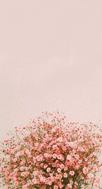 Aesthetic Pink Flower Phone Wallpaper