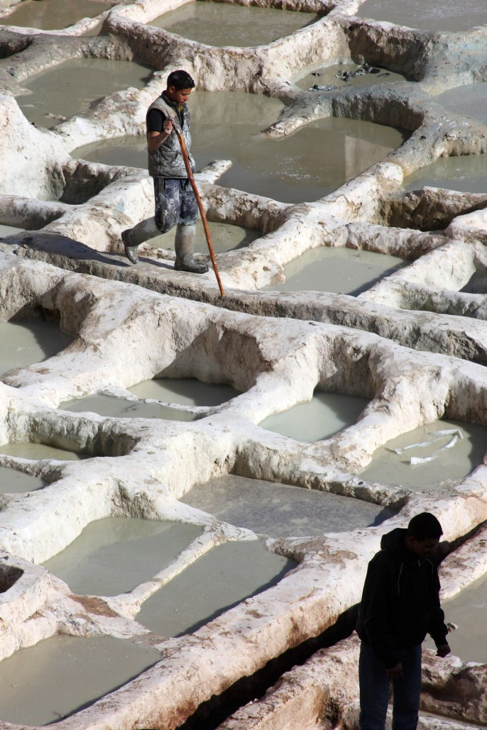 Workers in the Fez tannery