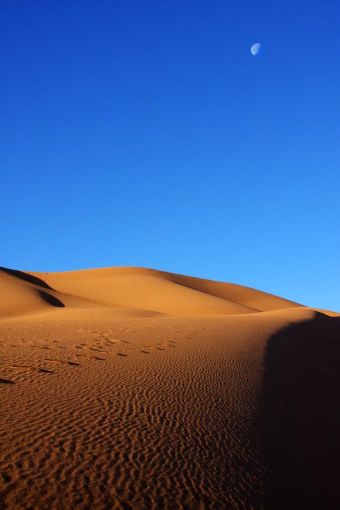 The moon sets over dunes in Mergouza
