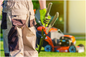 landscaping tools and equipment