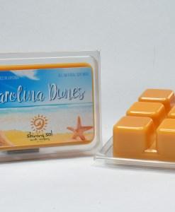 Carolina Dunes - Wax Melt