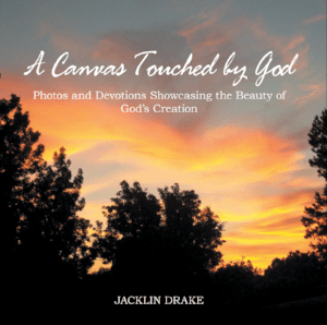 A Canvas Touched by God is a devotional book written by Jacklin Drake.