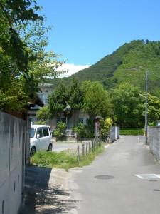 夏の色(2008-06-15 自宅付近にて)