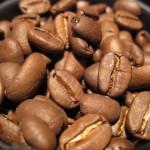 ガヨマウンテン。Beans での焼き具合は、中ぐらい?