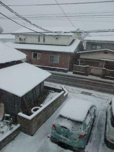 若松市内は雪が積もっていました。