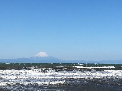 館山 富士山 ふかひれ フカヒレ