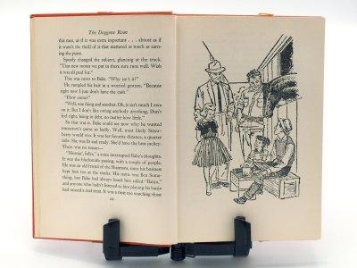 Doggone Roan - illustration page 10