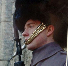 5_guardsman1.jpg