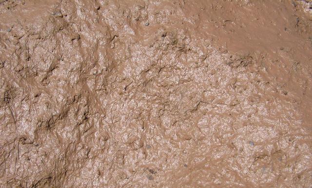 21-mud.jpg