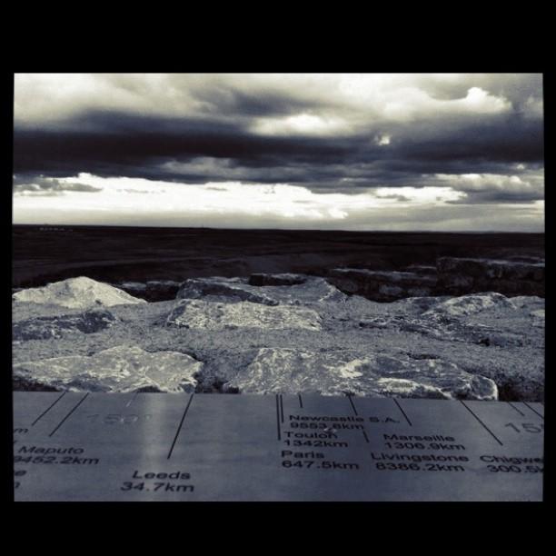 coldstone-cut.jpg