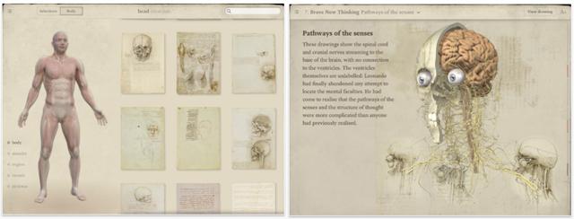 da-vinci-anatomy-screenshot.jpg