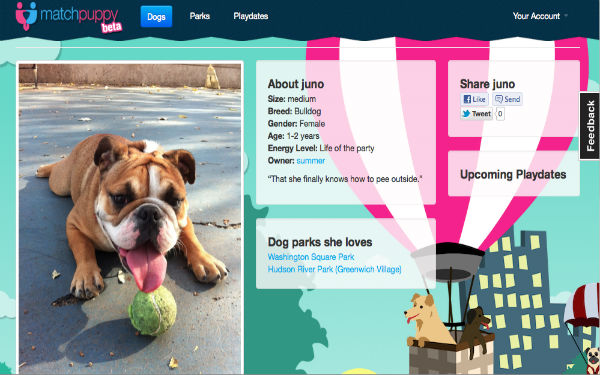 match-puppy.jpg