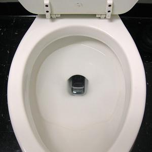 phone-down-toilet.jpg