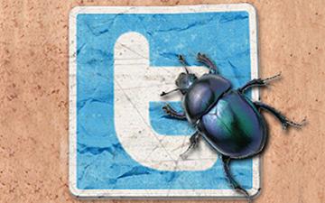 twitter-bug.jpg