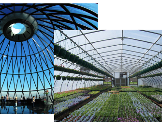gherkin greenhouse