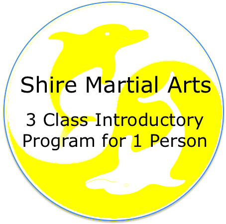 Shire Martial Arts Intro Program 1