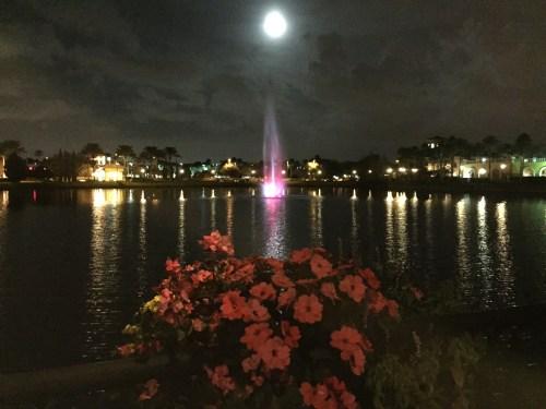 Moon over Orlando. A wishing moon.