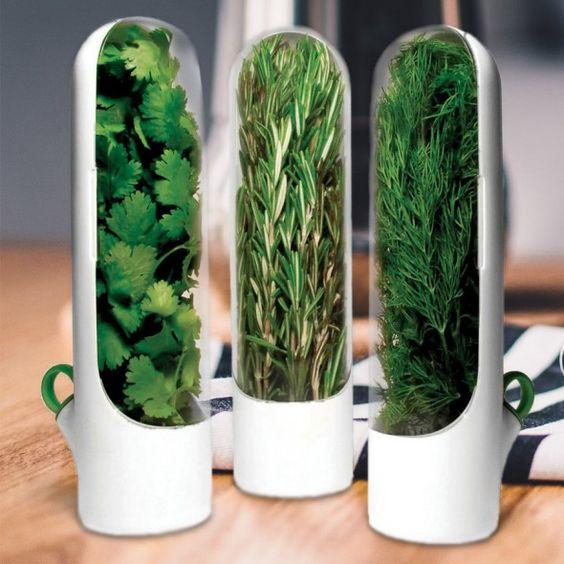 אחסון עשבי תיבול במקרר