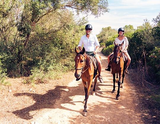 רכיבה על סוסים בדרום