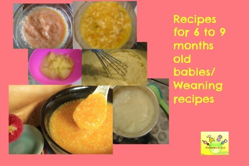 Baby Recipes 6 to 9 months old