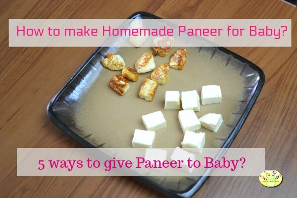 How to give cheese paneer cottage cheese to baby 5 paneer recipes 5 ways to give homemade paneer to baby forumfinder Image collections
