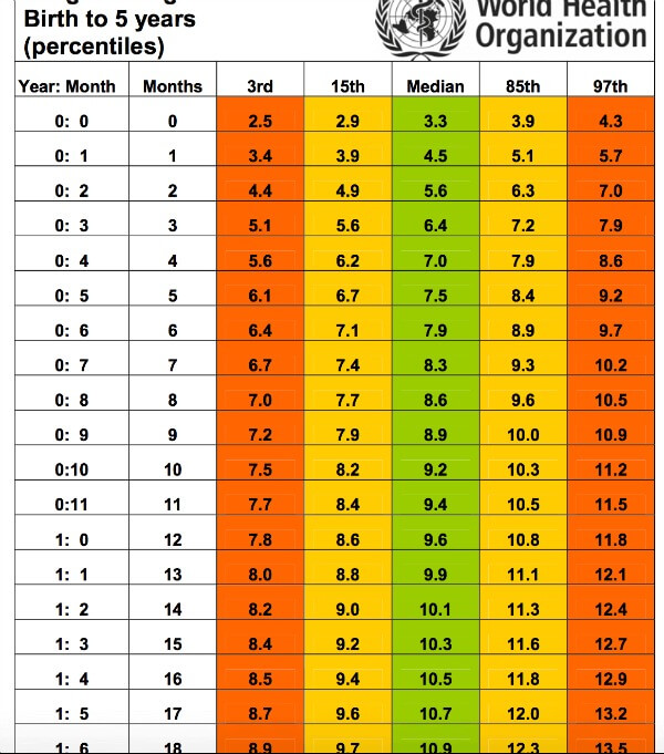 WHO weight chart for boys
