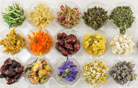 Conventional Additives to Enhance Energizing Teas