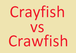 Crayfish and Crawfish, Difference between Crayfish and Crawfish, Crayfish, Crawfish, Seafood, Lobster, Shivesh, Kitchen, Recipe, Cooking, Food
