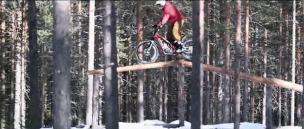 1502redbull映像(木の上)