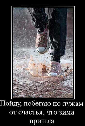 Прикольные статусы про зиму | Шмяндекс.ру