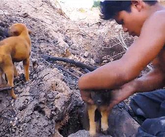【衝撃】少年が森で拾った子犬達に木の棒と泥で子犬の家を作る衝撃映像