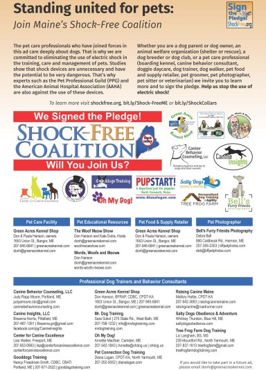 Downeast News Shock Collar Coalition November Ad