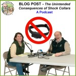 Shared Podcast – The Unintended Consequences of Shock Collars