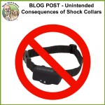 Shared Blog Post – The Unintended Consequences of Shock Collars