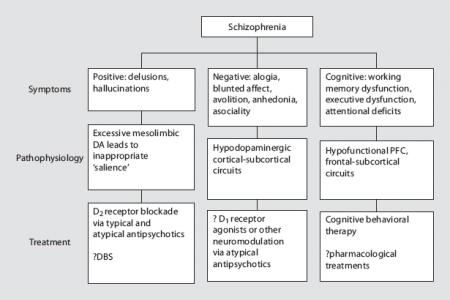 Deep Brain Stimulation for Schizophrenia? (1/3)