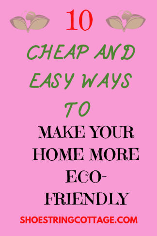 make your home more eco-friendly