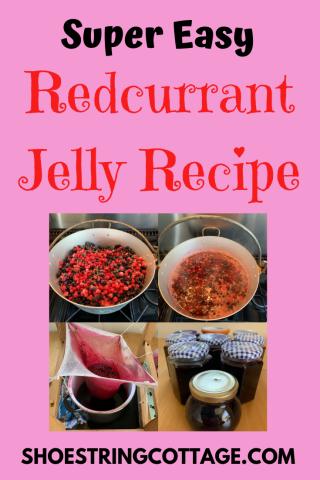 redcurrant jelly recipe