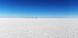塩 専業流通網