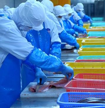食品衛生管理対策 HACCP義務化