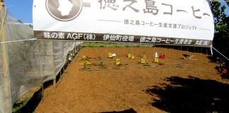 写真①(AGF実証農場)