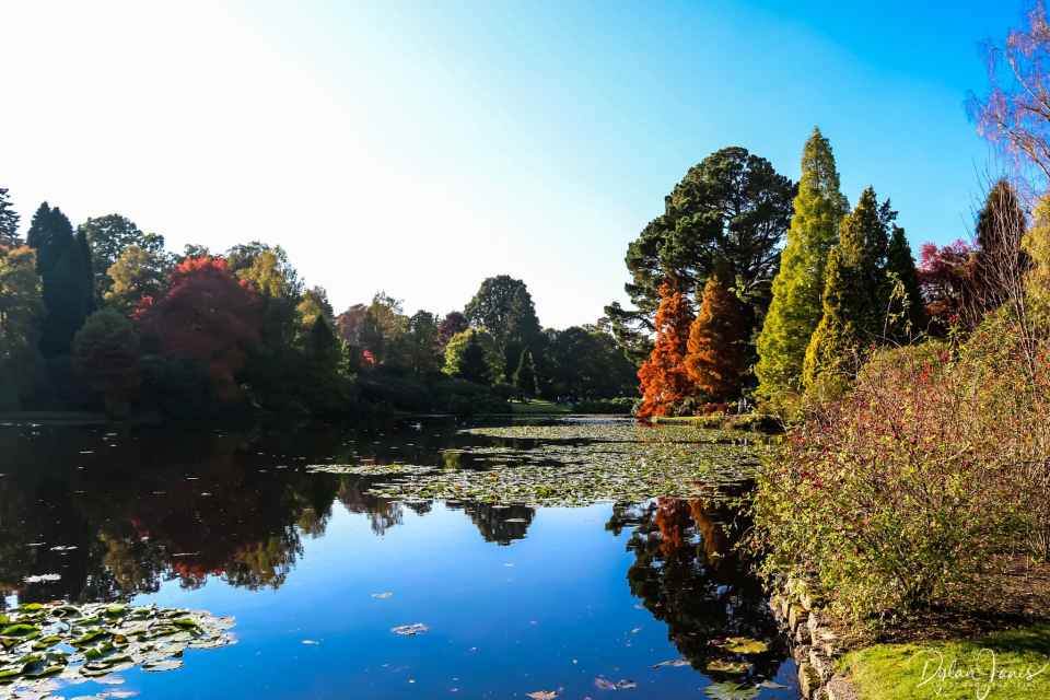 Sheffield Park and Garden Ten Foot Pond refelections