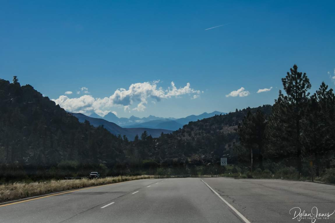 Eastern Sierra pine forest and peaks of the High Sierra