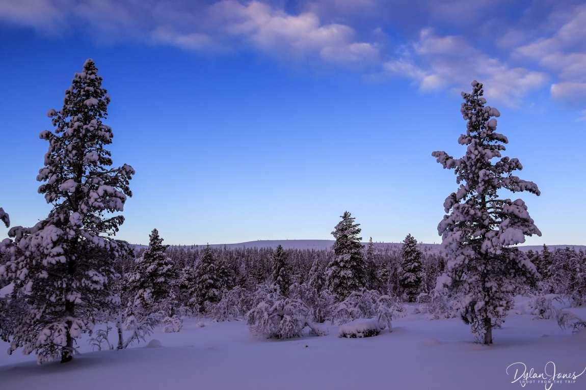 Views from the gentle hiking trails of Kiilopää, Saariselkä Lapland