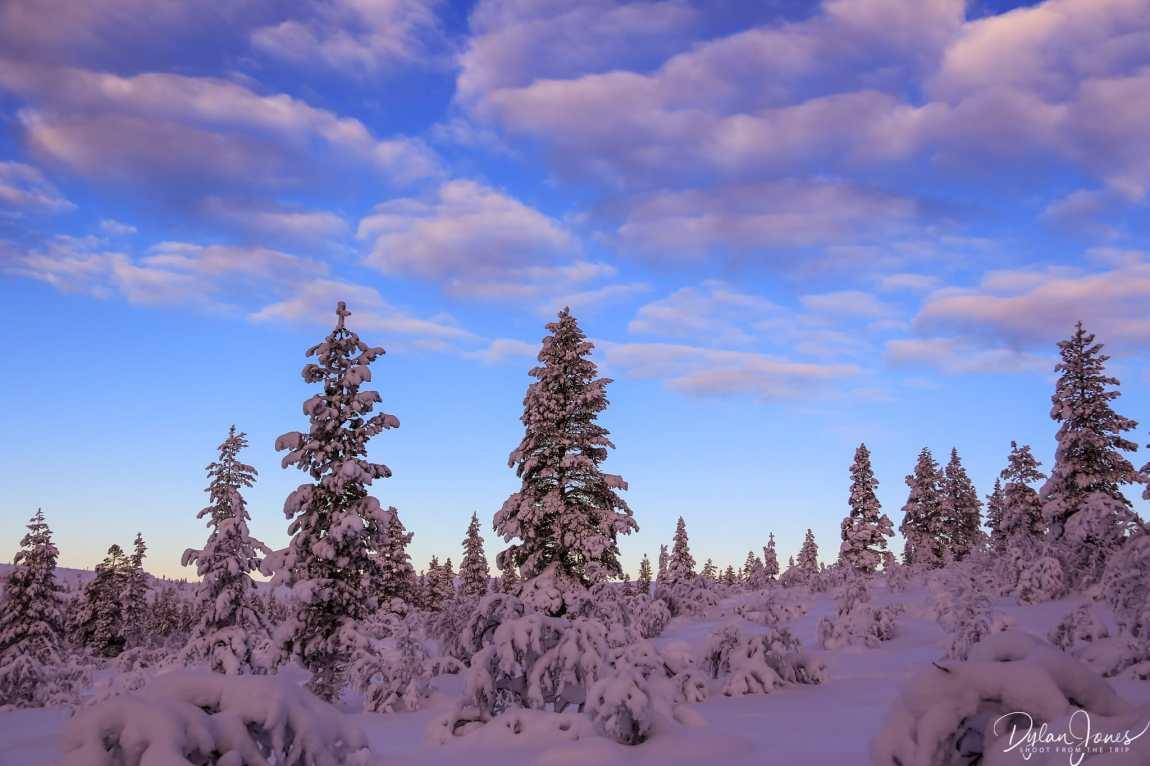 Postcard scenes from the gentle hiking trails of Kiilopää, Saariselkä Lapland