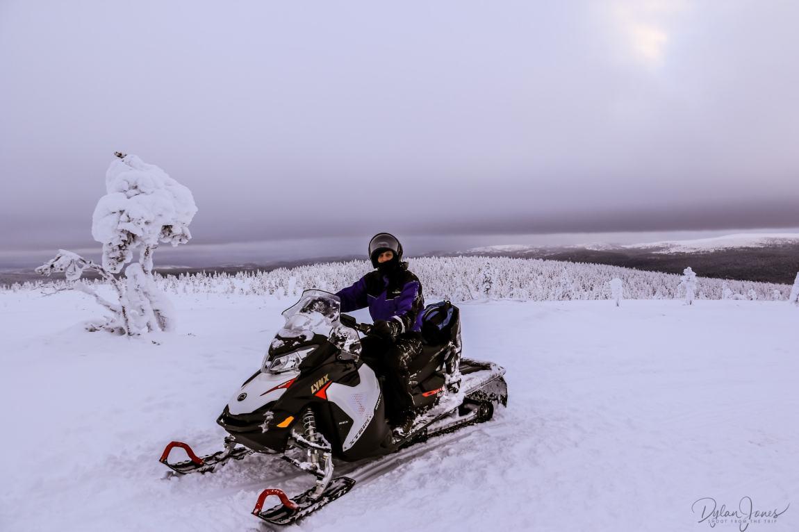 Snowmobile Safari photo opportunity