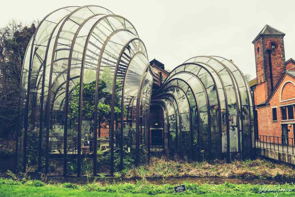 Botanical Glasshouses at Bombay Sapphire Distillery Tour