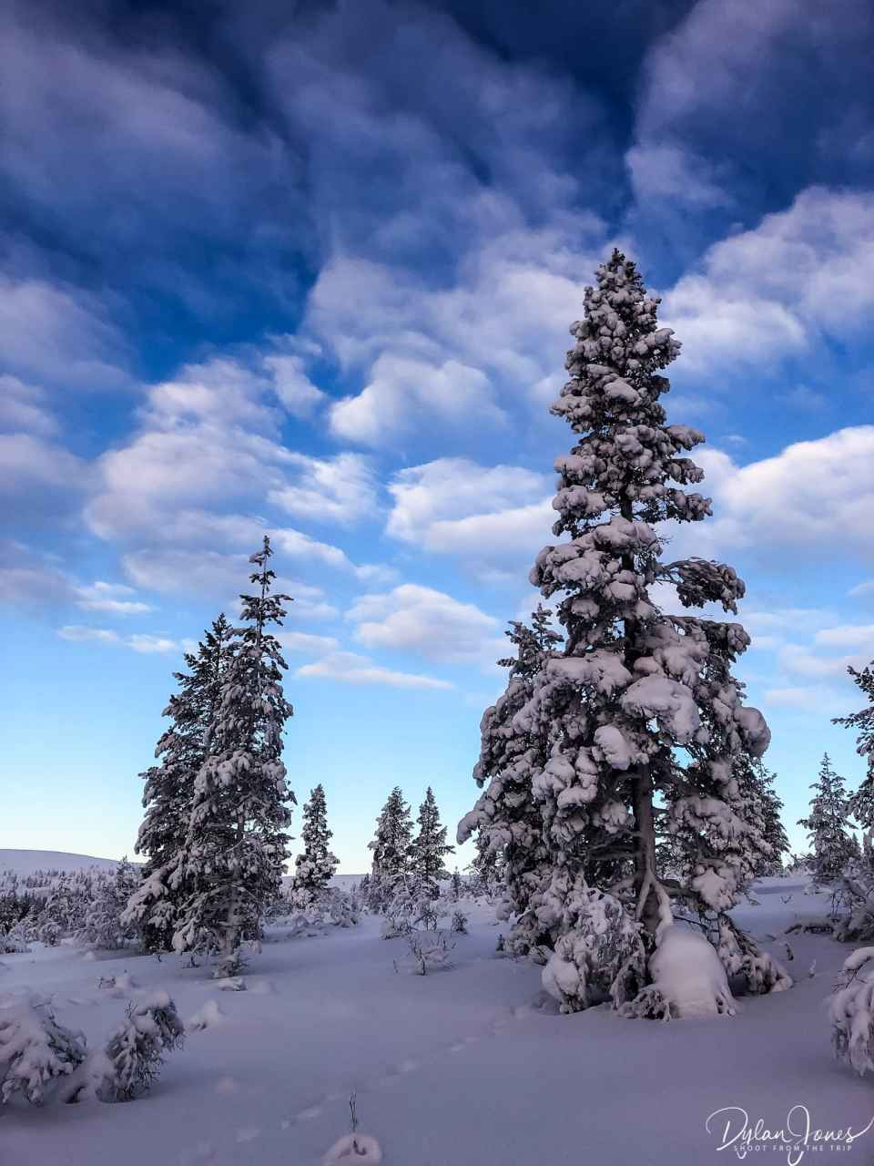 Beautiful Lapland winter scenery at the Kiilopää fell