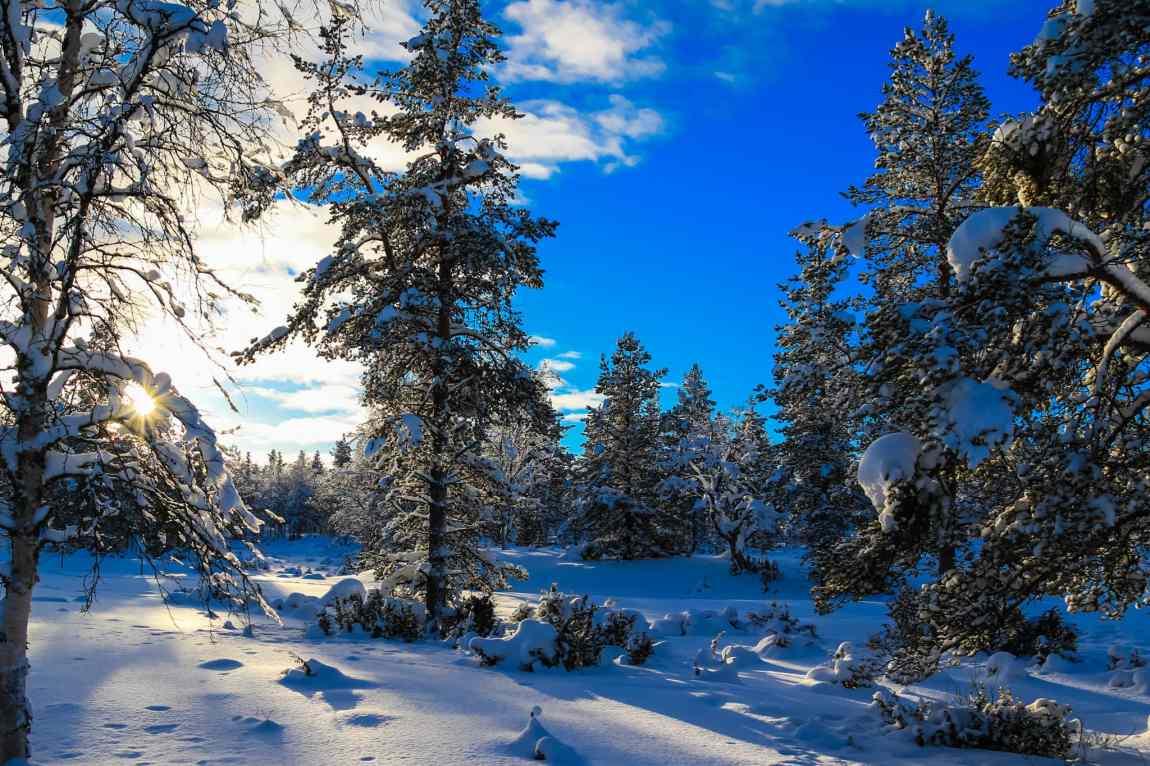Beautiful Lapland winter scenes at Kakslauttanen Arctic Resort West Village