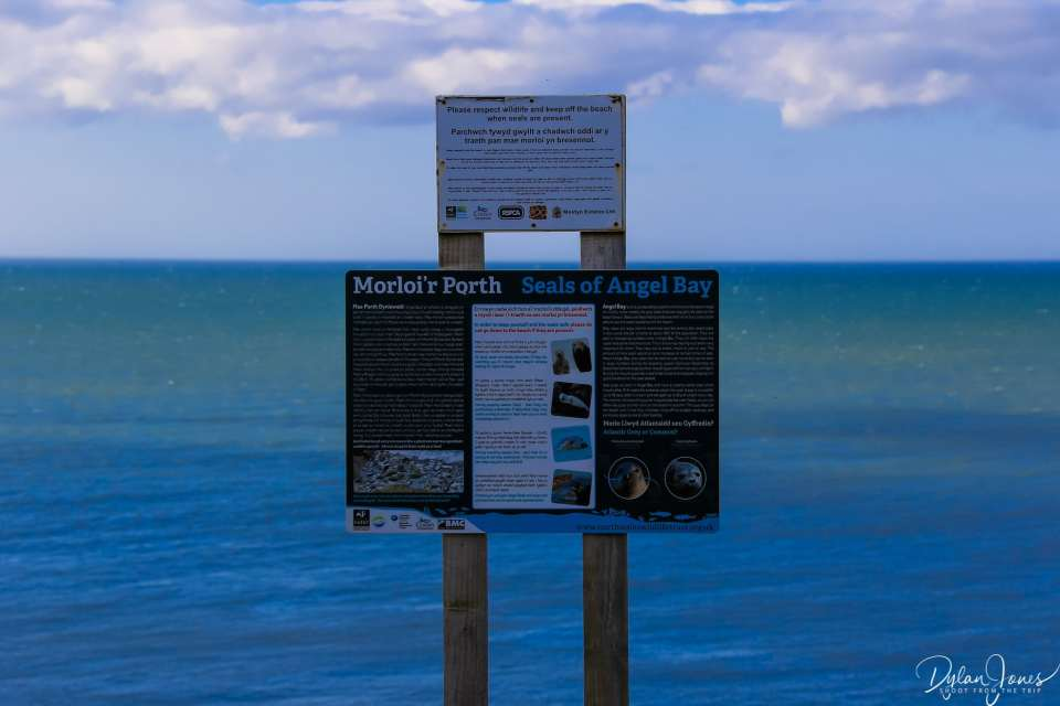 The seals of Angel Bay signage